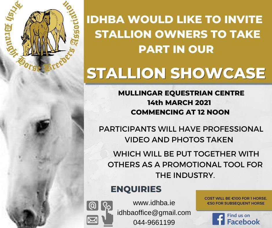 Stallion Showcase